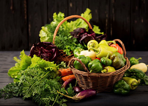 tanaman sayuran hidroponik